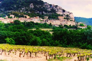 Cotes_du_Rhone_Village_Seguret_vineyards